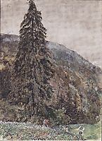 The large pine in Gastein, 1895, altrudolf