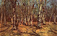 Beech Forest, andreescu