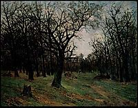 Leafless forest, andreescu
