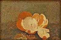 Peeled Orange, andreescu