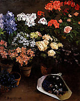Study of Flowers, 1866, bazille