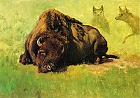 Bison with Coyotes in the Background, bierstadt