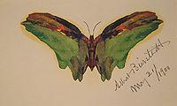 Butterfly, 1900, bierstadt