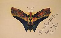 Butterfly (second version), 1900, bierstadt