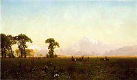 Deer Grazing, Grand Tetons, Wyoming, 1861, bierstadt