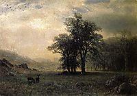 Deer in a Landscape, bierstadt