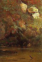 Ferns and Rocks on an Embankment, 1869, bierstadt