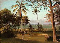 Florida Scene, bierstadt