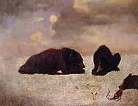 Grizzly Bears, c.1859, bierstadt