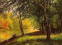 Merced River, California, bierstadt