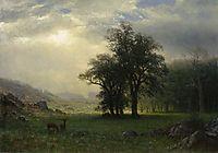 The Open Glen, c.1879, bierstadt
