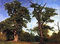 Pioneers of the Woods, 1858, bierstadt