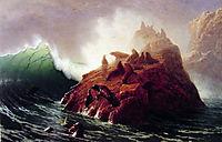 Seal Rock, c.1872, bierstadt