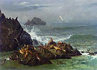Seal Rocks, Pacific Ocean, California, c.1872, bierstadt