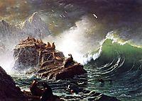 Seals on the Rocks, Farallon Islands, c.1873, bierstadt