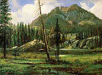 Sierra Nevada Mountains  , bierstadt