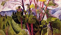 Landscape (mountains), 1916, boccioni