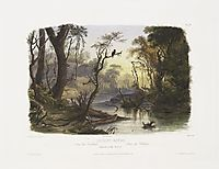 Cutoff River, Branch of the Wabash, plate 8 from Volume 1 of -Travels in the Interior of North America-, 1843, bodmer
