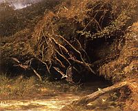 Forest with Ducks and Frogs, bodmer