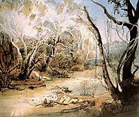 The Fox River near New Harmony in Indiana, 1832, bodmer