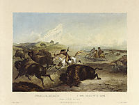 Indians hunting the bison, plate 31 from Volume 2 of -Travels in the Interior of North America- , 1834, bodmer