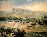 Landscape with buffalo on the upper Missouri, 1833, bodmer
