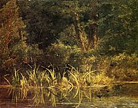 River Scene with Barn Swallows, bodmer