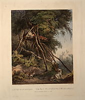 Tombs of Assiniboin Indians on Trees, plate 30 from volume 1 of `Travels in the Interior of North America-, 1832, bodmer