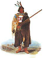Young Amerindian , bodmer