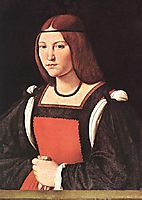 Portrait of a Young Woman, boltraffio