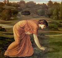 The March Marigold, c.1870, burnejones