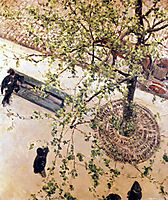 Boulevard seen from above, 1880, caillebotte