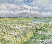 Fields, Plain of Gennevilliers, c.1884, caillebotte
