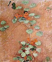 Nasturtiums, 1892, caillebotte