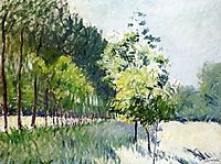 Orchard and avenue of trees, c.1894, caillebotte