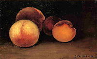 Peaches, Nectarines and Apricots, c.1878, caillebotte