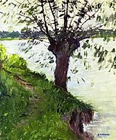 Willow on the Banks of the Seine, caillebotte