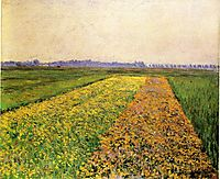 The Yellow Fields at Gennevilliers, 1884, caillebotte