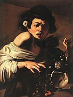 Boy bitten by a Lizard, 1594, caravaggio