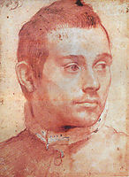 Portrait of a man, carracci
