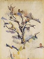 The Oak , 1885, cezanne