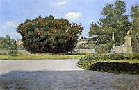 The Big Oleander, 1907, chase