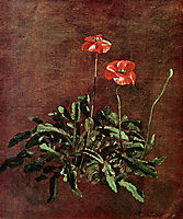 Study for poppies , constable