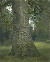 Study of the Trunk of an Elm Tree, 1821, constable