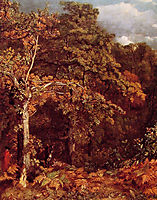 Wooded Landscape, 1802, constable