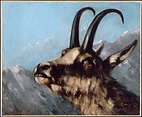 Head of Gazelle, courbet