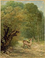 The Hunted Deer, Spring, 1867, courbet