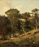 Postwick Grove, Norwich, 1817, crome
