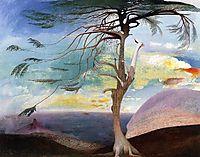 The Lonely Cedar, 1907, csontvary
