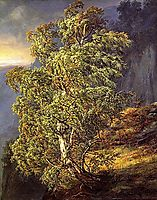 Bjerk i storm, 1848, dahl